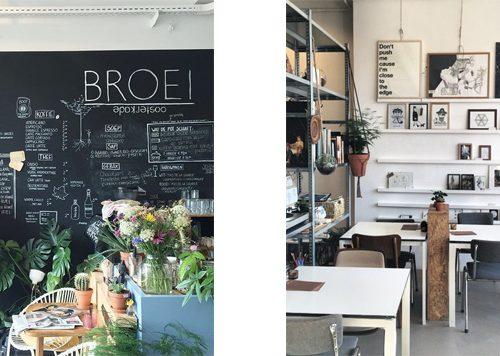Broei, Utrecht