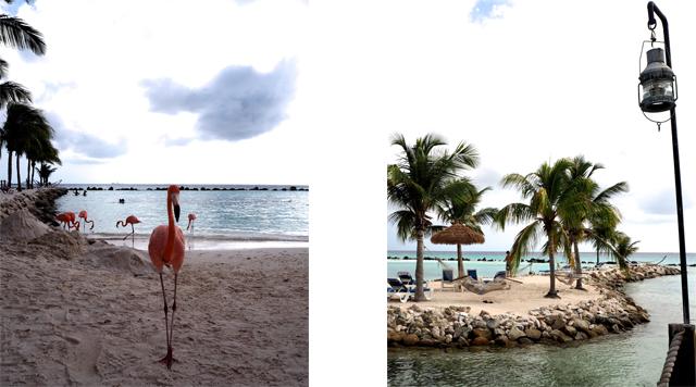 Barts Boekje - Renaissance Island Aruba