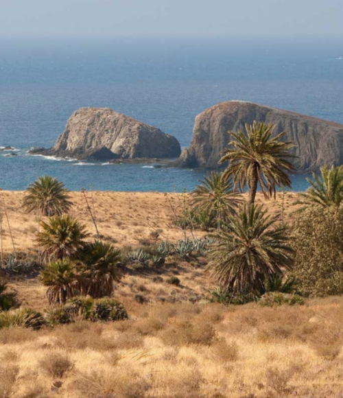 ALBARICOQUES RURAL in Cabo de Gata, Spanje
