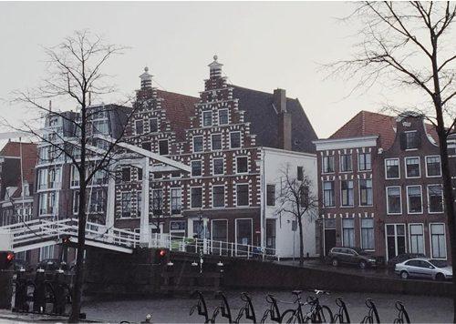 5 x Het Beste van Haarlem