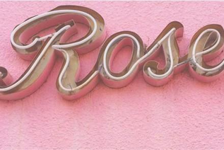 Barts-Boekje-roze