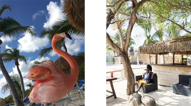 barts-boekje-Aruba