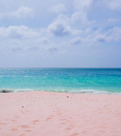 Aruba - Barts Boekje