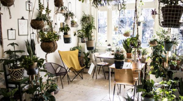 Bart Bouwt: 10 x Stadstuinwinkels Nederland