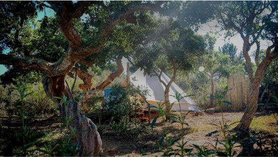 Into the Wild Algarve