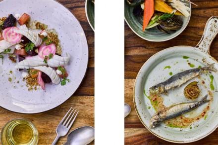 Barts-Boekje- bar fisk