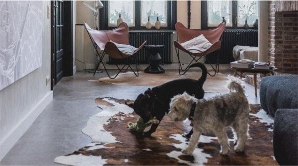 Little Escapes: Honden Welkom