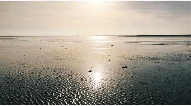 Barts Boekje - leearden zee