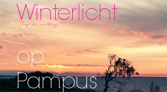 Barts-Boekje- Winterlicht op Pampus