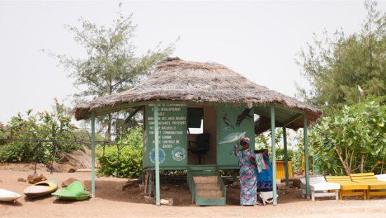 Senegal: moet je doen!