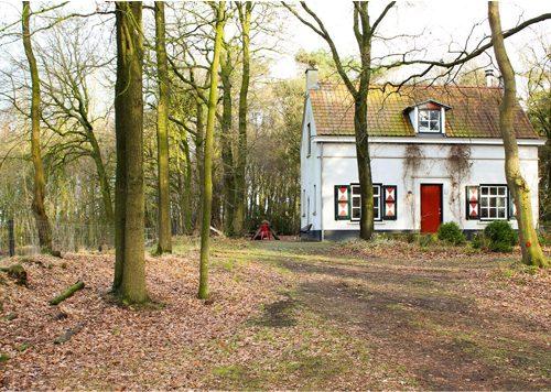 Slapen op de heide Strijbeek (Brabant)