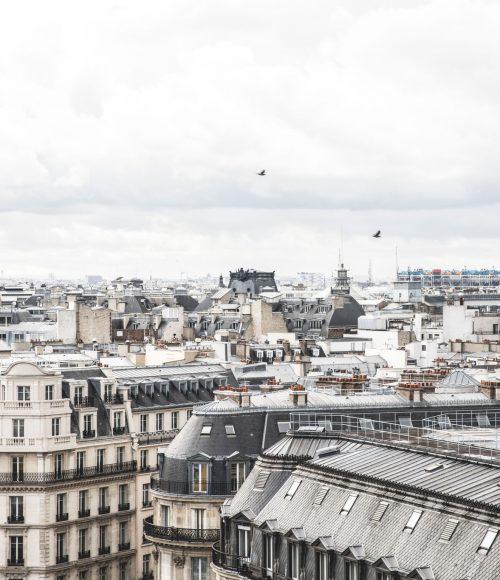 3 x favoriete hotels in Parijs (met hond en eventueel baby)