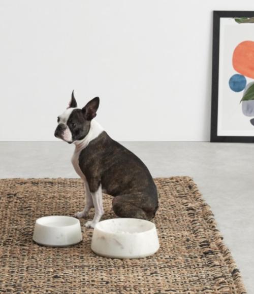 de huisdierencollectie van Made.com is dus écht heel leuk