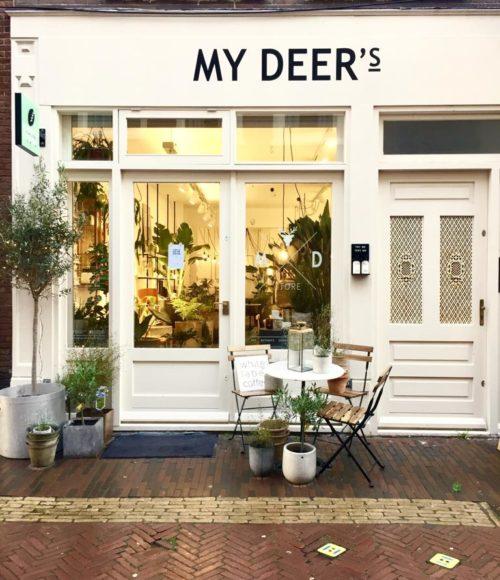 Nieuw: French Napa x My Deer's, Haarlem