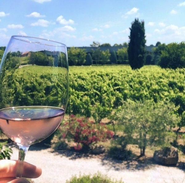 Verbouw je eigen wijn met grapekeeper