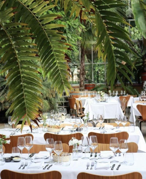 Een tropical wedding: hortus botanicus Amsterdam