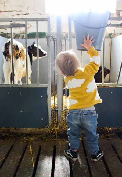 bartsboekje-boerderijdagen1