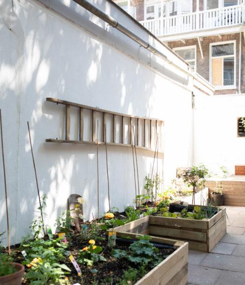 Plasticvrij en vegan in Amsterdam West: Little Plant Pantry