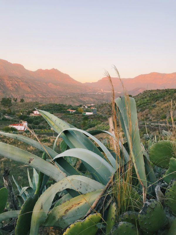 Los Little Escapos: slapen OP het strand of in de bergen van Gran Canaria, Spanje