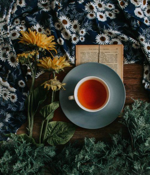 Tea Time! How to Theeleuten in New York