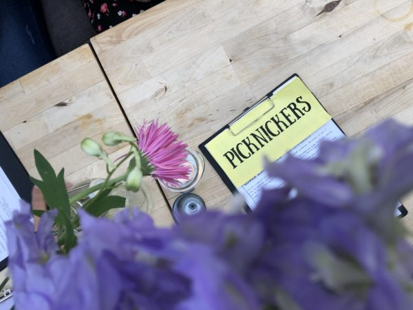 Friese favoriet: Picknickers in Terherne, Friesland