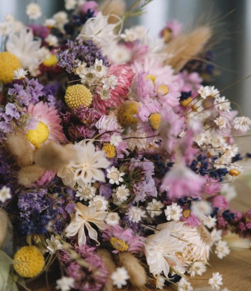 Droogbloemen en Pampasgrassen kopen in Amsterdam