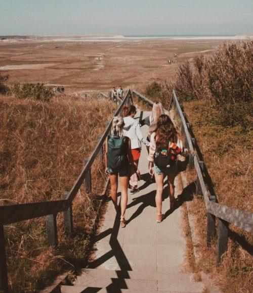Backtonature Hikes – wandelen en transformeren in Nederland