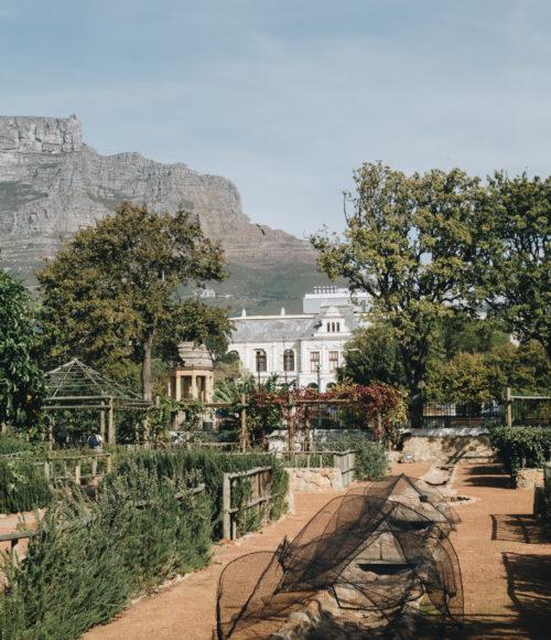 tipje van de sluier: 5 x het leukste van Kaapstad City uit Cool Cape Town Kids.