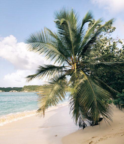 Winterzon in Europa: de eilanden van Guadeloupe – deel 1