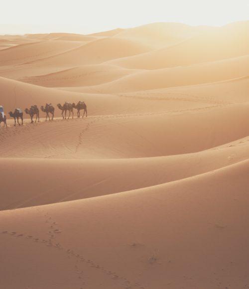 maroc barts boekje