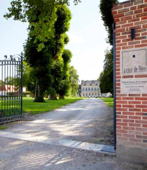 La Cour de Rémi - barts boekje
