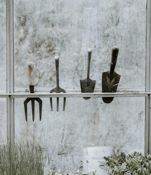 Een droge tuin, zo ga je er mee om