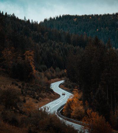 Schwarzwald - Barts Boekje