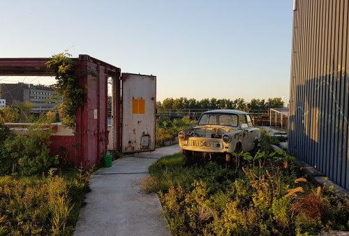 Rosemary's rooftop - Restaurant Bureau