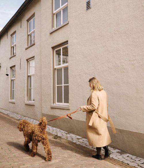 Dogmoms: stijlvolle hondenriemen, halsbanden en hondenspeeltjes