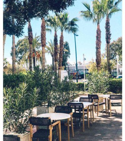 The Passion Café Ibiza - Barts Boekje