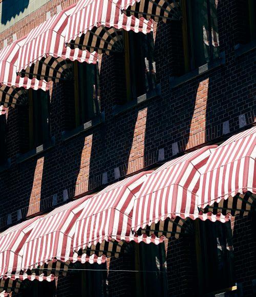 afhalen en thuisbezorgt in Den Haag (en rond Den Haag) – dit zijn de favorieten
