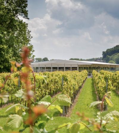 wijnrestaurant op het land