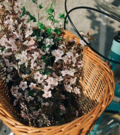 bloemen en planten fiets drive-thru in Amsterdam