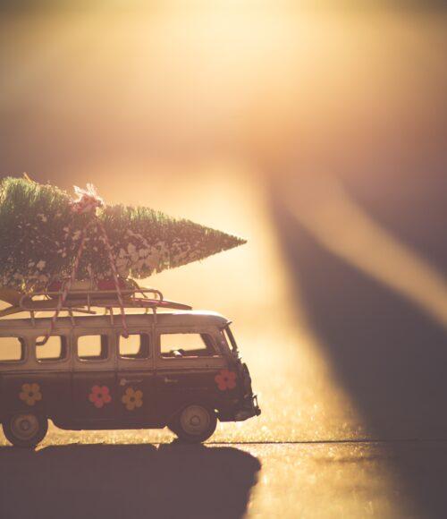 Kids to Go: de leukste tuincentra, kerst-shops en drive thru's door het hele land