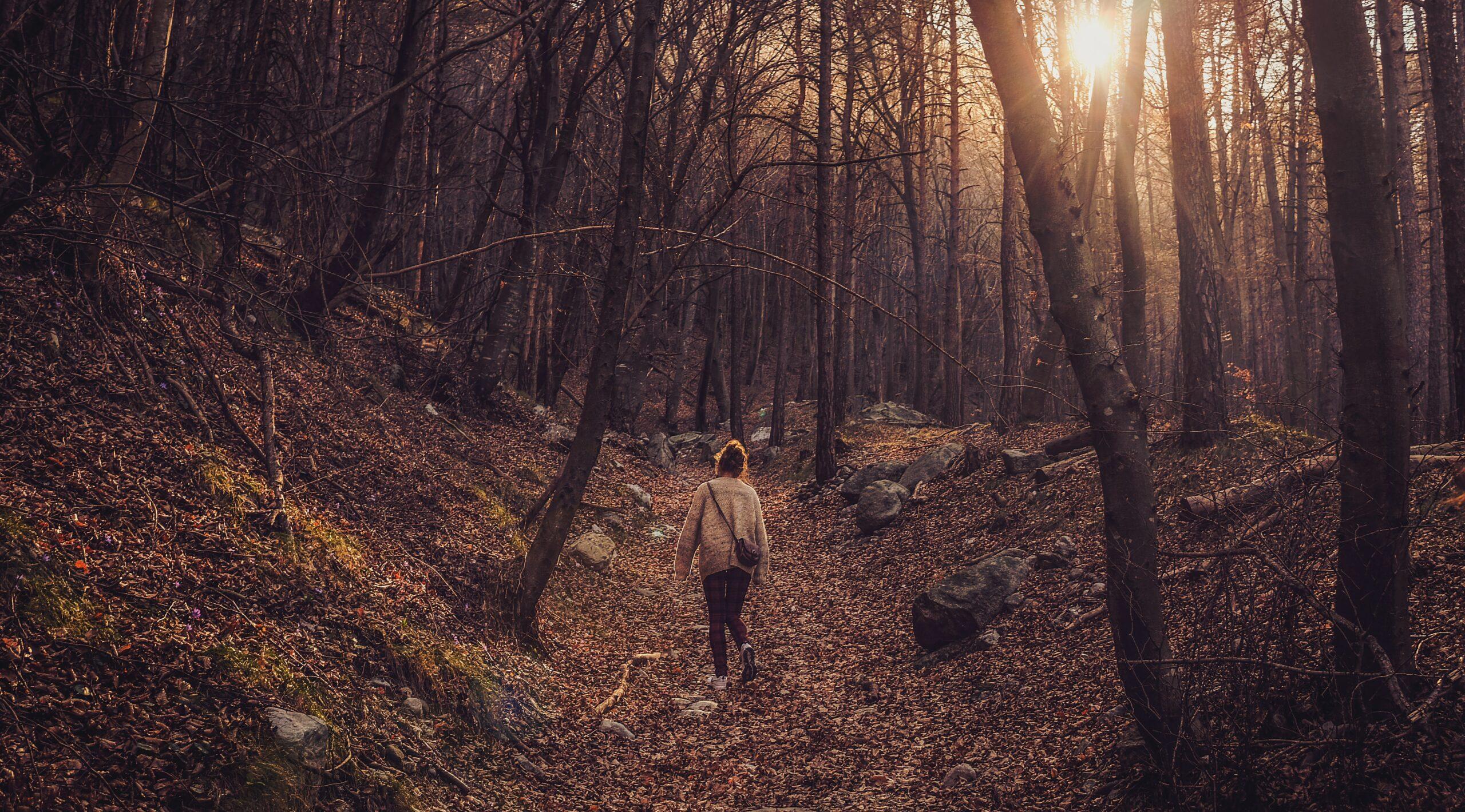 Lekkerste buitenplekken voor een perfecte (herfst)wandeling én je opperbeste dosis take out koffie