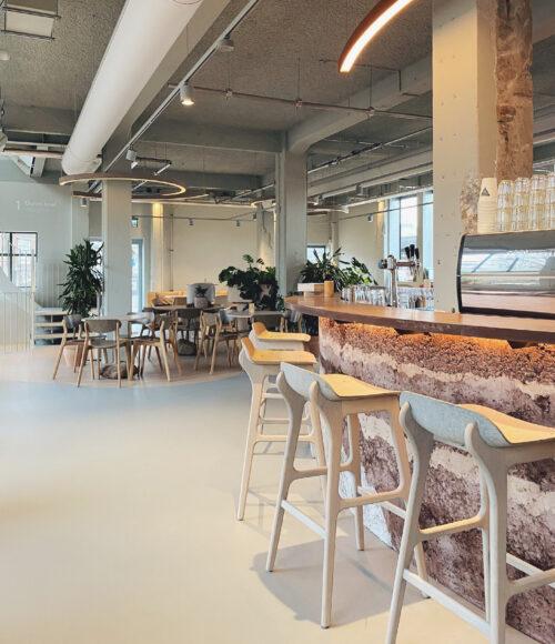 Mama Gaia, plant based restaurant in Haarlem