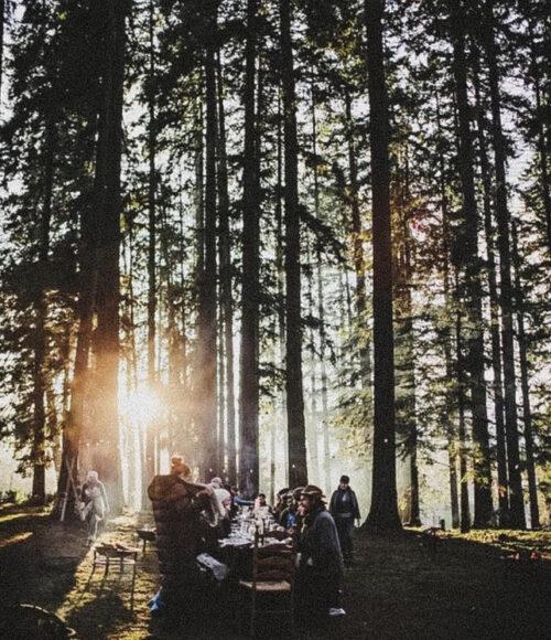 Off the grid slapen en eten in de Veluwse bossen bij Bohiem