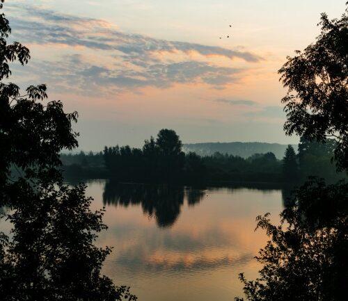 Ode aan het Landschap: tijd om de natuur in de spotlight te zetten