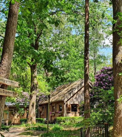 fairytale cabin