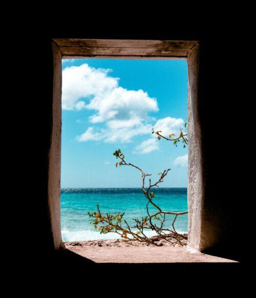 Barts Best Of: Bonaire