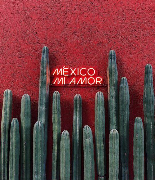 O land van al mijn dromen… Mexico aan huis? Ja hoor! Dit zijn de tips voor een Mexicaans Vakantiestijl feestje thuis.