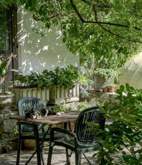 Barts Buiten: De augustus-tuin (2021)