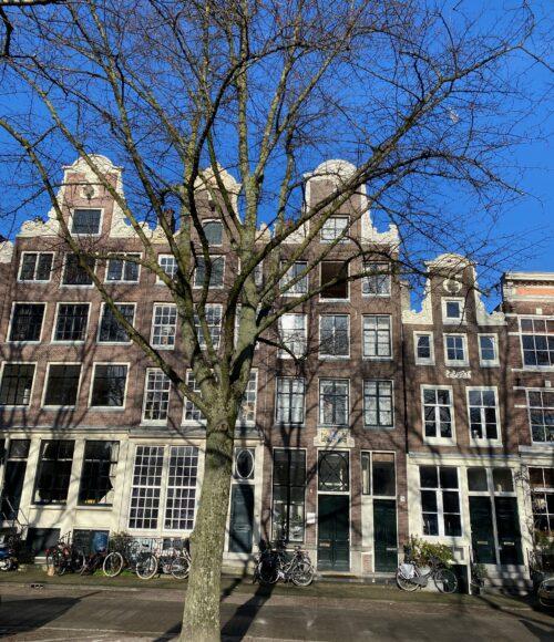 7 x Noordermarkt Amsterdam